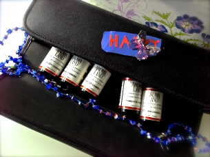 Aromaland Travel Case